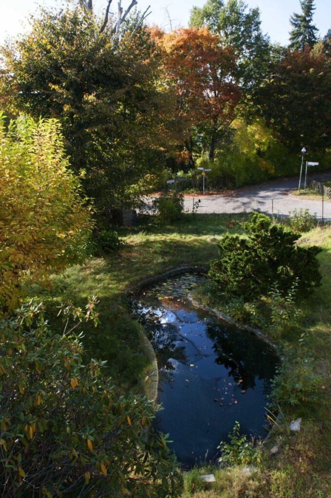 Yun-Haus - Gartenteich